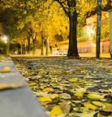 Есен е - почистим и тялото