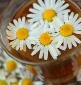Основни храни за подмладяване на кожата