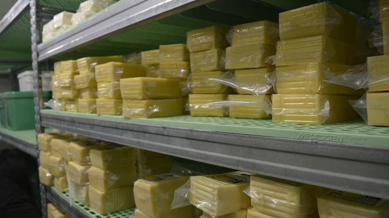Семейна мини мандра произвежда качествени продукти от планинско мляко