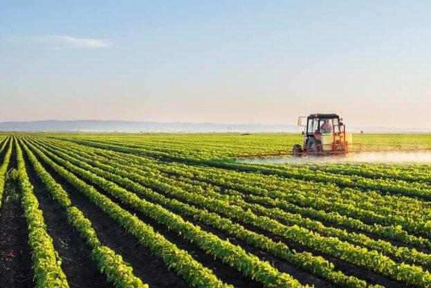 С 12,9 млн. лева е увеличен бюджетът по подмярка за млади земеделски стопани