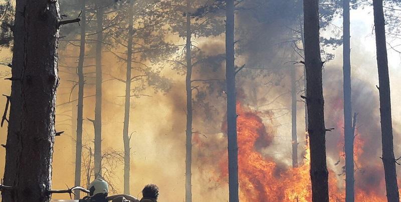33 пожара са възникнали от началото на годината на територията на СИДП