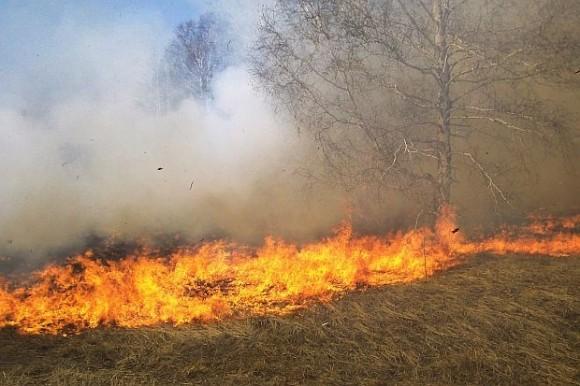 РИОСВ с мерки срещу пожарите в региона