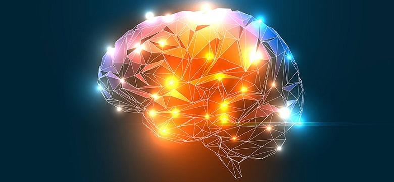 Днес е Световният ден на мозъка