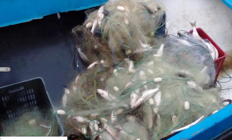 Трима бракониери заловени на Варненското езеро